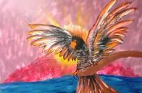 Flaming Galah