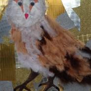 Owlmu